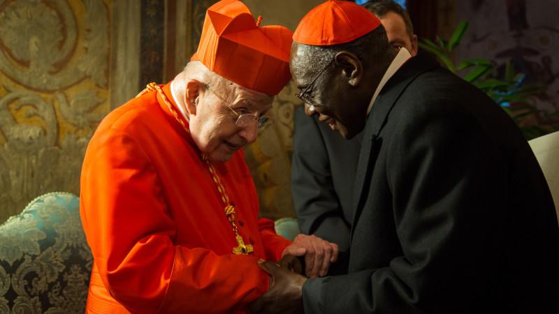 Die katholische Kirche erhält 20 neue Kardinäle. | © 2015 Andrea Krogmann
