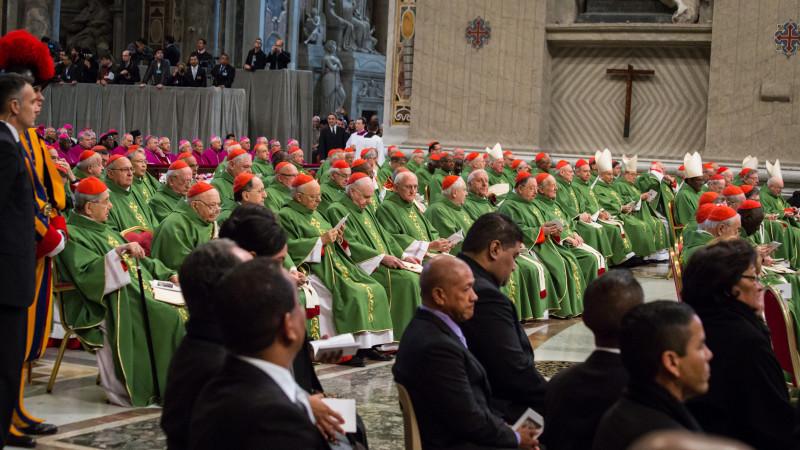 Papst Franziskus feiert mit dem Kardinalskollegium und den neukreierten Kardinälen Messe im Petersdom | © 2015 Andrea Krogmann