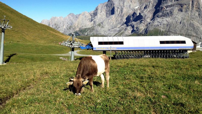 Landwirtschaft in Tourismusgebiet, Berner Oberland  | © Georges Scherrer