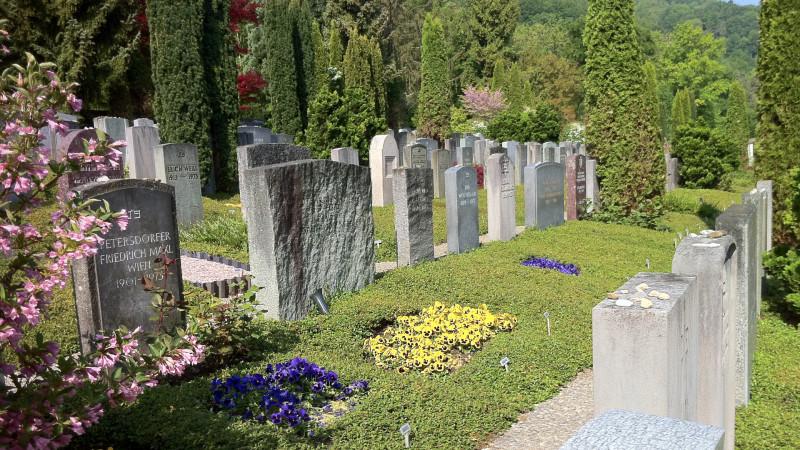 Jüdischer Friedhof Friesenberg | © 2015 zVg