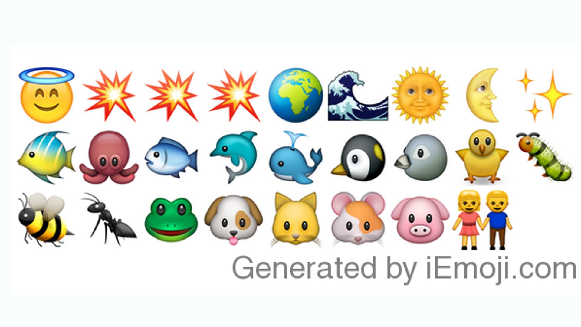Bibel In Emojis Erschienen Watermelon Wallpaper Rainbow Find Free HD for Desktop [freshlhys.tk]
