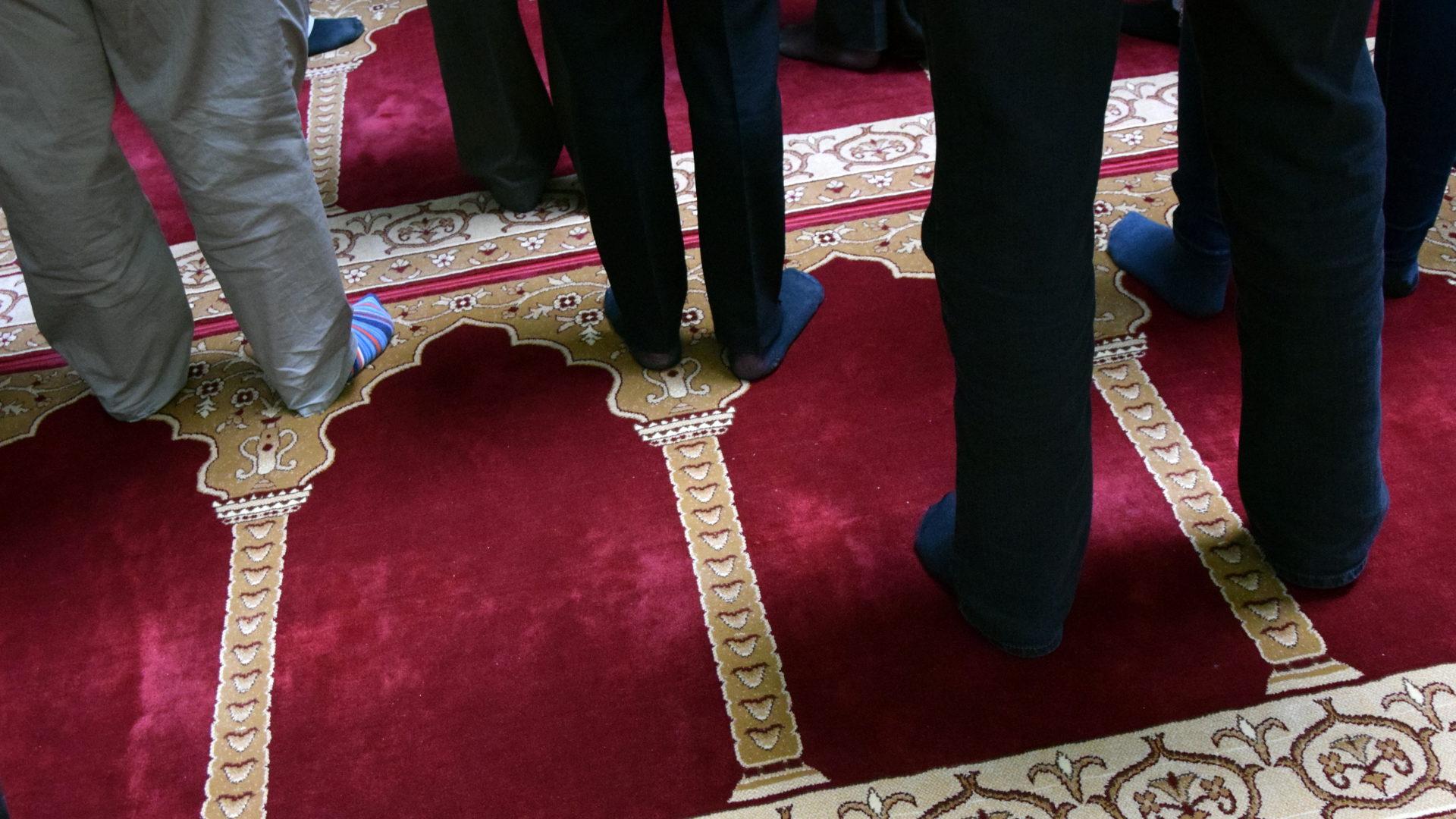fleischmanns muslim Belonging nowhere: marginalization & radicalization risk among  belonging nowhere: marginalization & radicalization risk  hyphenated selves: muslim american.