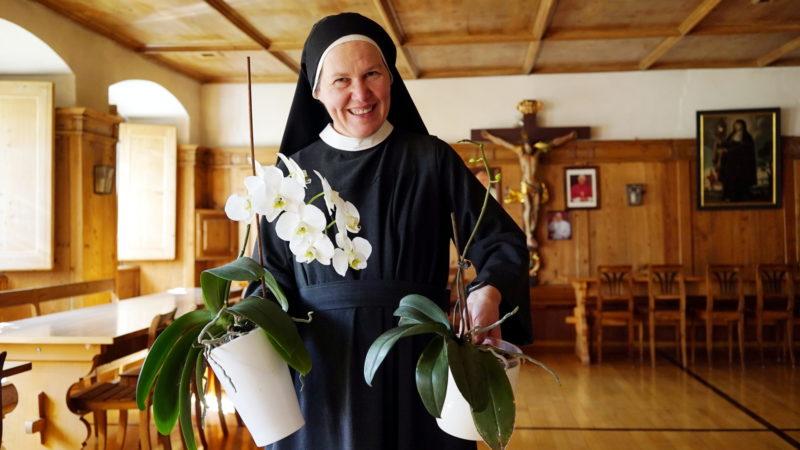 Sr. Agatha Kocher mit Orchideen im Refektorium | © Vera Rüttimann