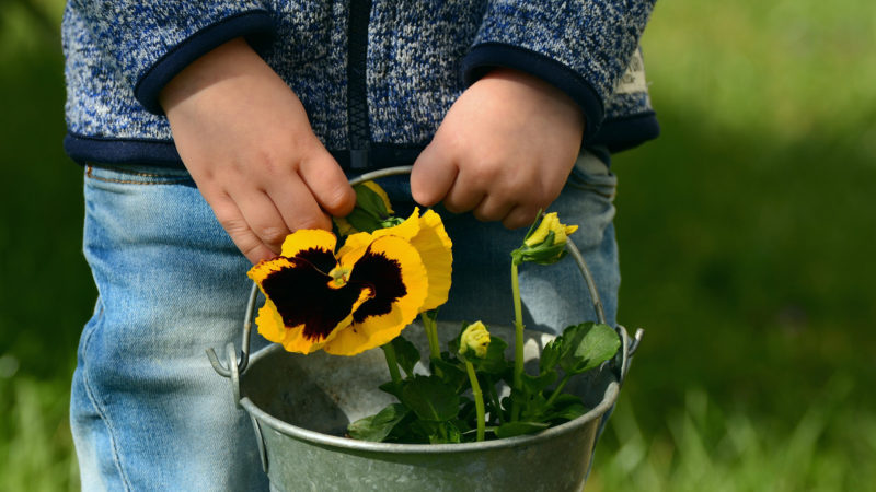 Zum Muttertag. | © pixabay.com