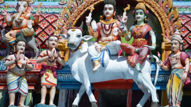 Auf dem Bullen: Shiva und seine Gattin Parvati  sind die Hauptgötter im Berner Hindutempel. | © Barbara Ludwig