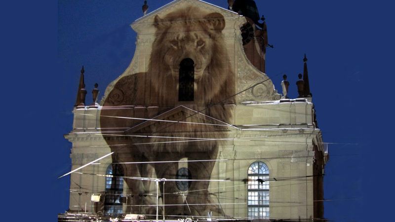 World Wildlife Day auf der Heiliggeistkirche Bern  | © Kathrin Naegeli