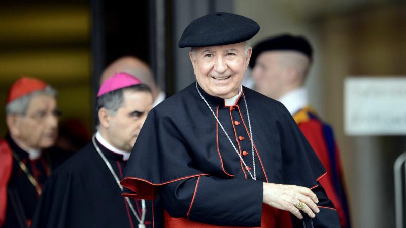 Kardinal Francisco Errazuriz Ossa, 2014 im Vatikan | © KNA