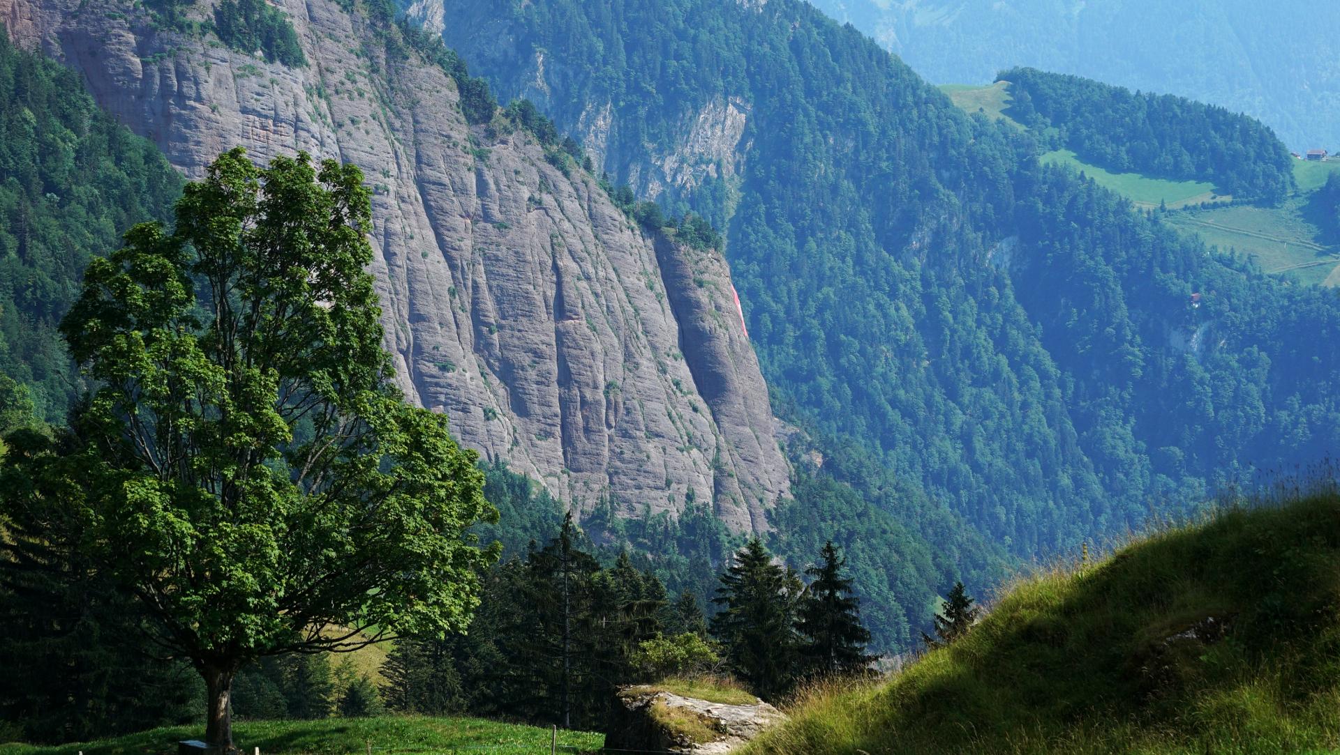 Rote Felswand an der Rigi | © Vera Rüttimann
