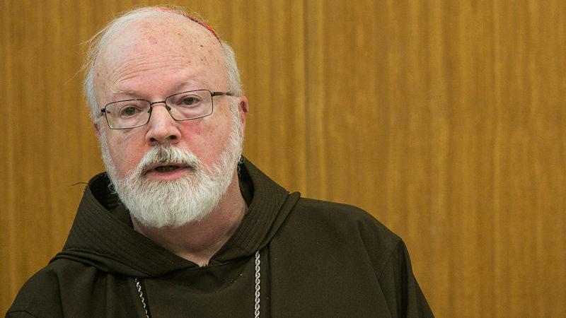 Kardinal Sean Patrick O'Malley, Erzbischof von Boston | © KNA
