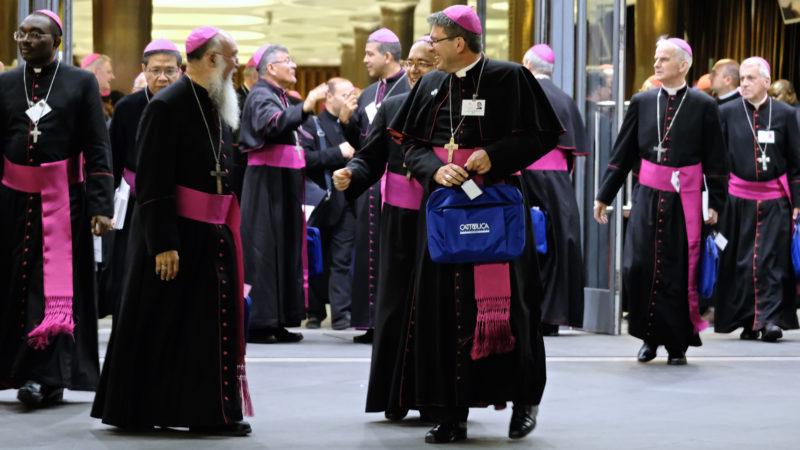 Bischöfe aus aller Welt – an der Jugendsynode | © Oliver Sittel