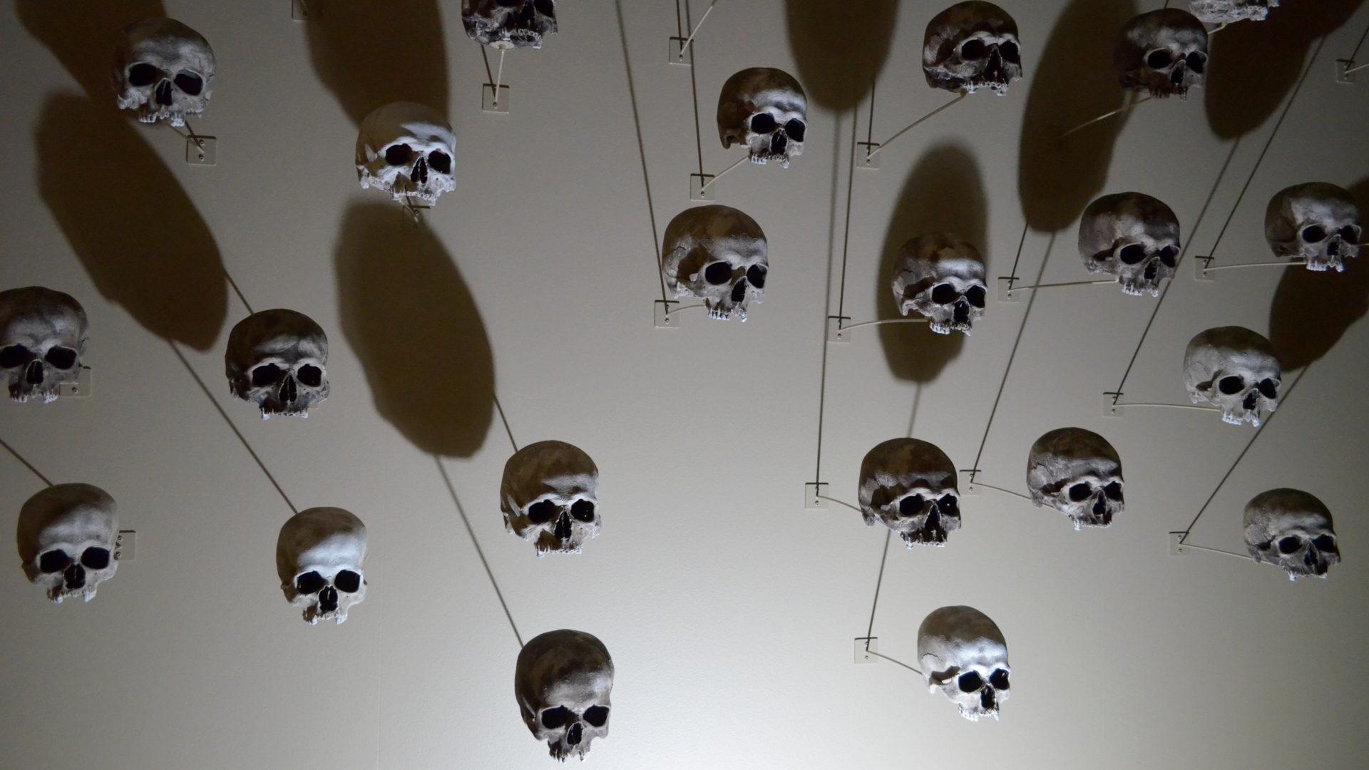 Totenköpfe stehen für urzeitliche Ritualmorde | © Regula Pfeifer