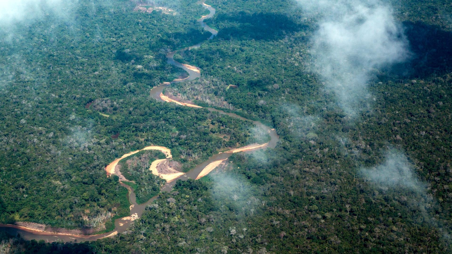 Dichter Amazonas-Urwald im Distrikt Roraima, Brasilien | © Adveniat