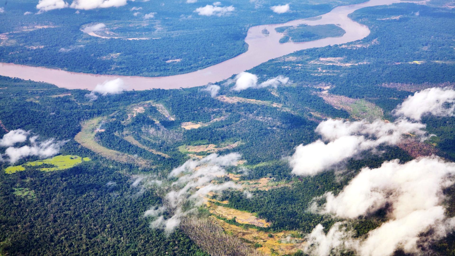Luftaufnahme des Amazonasgebietes | © Adveniat