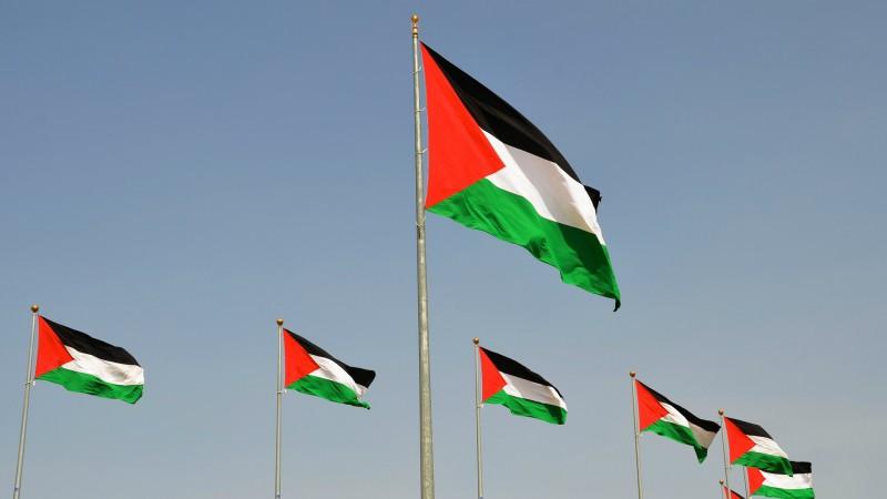 Les Palestiniens souhaitent que leur drapeau flotte à l'ONU (Photo:Scottgunn/Flickr/CC BY-NC 2.0)