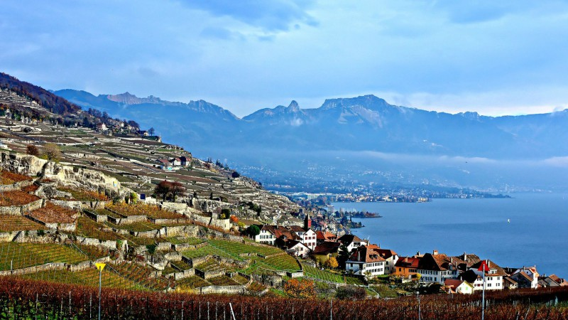 "Vue sur le Lavaux, dans le canton de Vaud (Photo:Diegojack/Jacques/Flickr/<a href=""https://creativecommons.org/licenses/by-nc-nd/2.0/legalcode"" target=""_blank"">CC BY-NC-ND 2.0</a>)"
