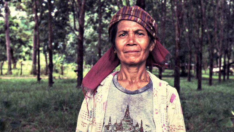 """Les courageux paroissiens thaïlandais ont planté 800 arbres (Photo d'illustration:Ronn Aka """"Blue"""" Aldaman/Flickr/CC BY-NC-ND 2.0)"""