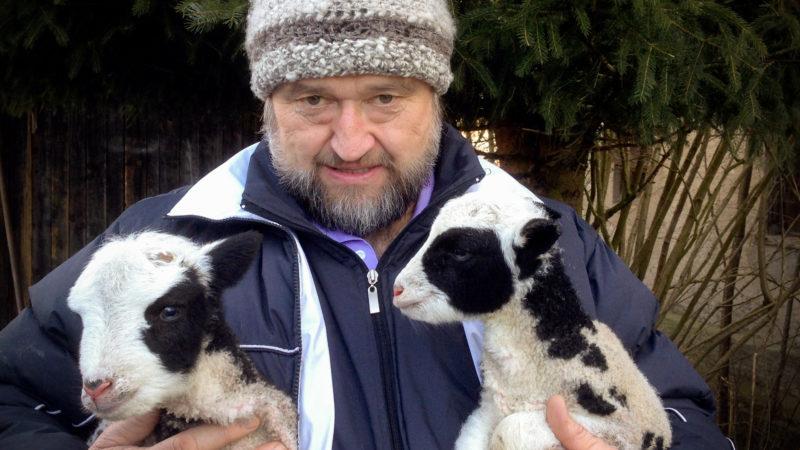Le diacre Sepp Hollinger avec ses moutons (Photo:Georges Scherrer)
