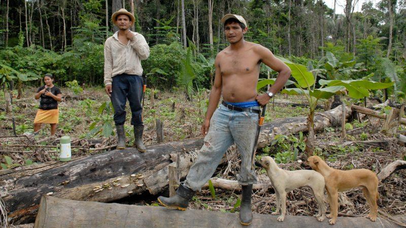En Amazonie, les petits travailleurs ruraux sont souvent menacés par les grands propriétaires terriens (Photo d'illustration:Jean-Claude Gerez)
