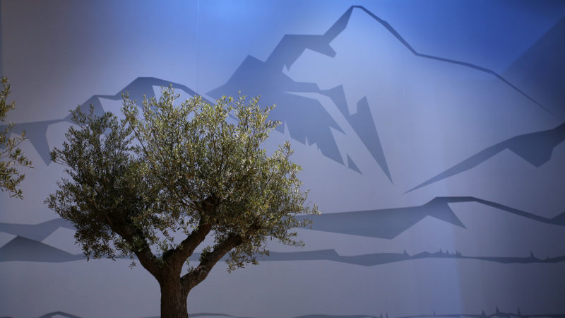 Paysage des bords du lac Léman pour la messe du pape à Palexpo  |  © Bernard Hallet