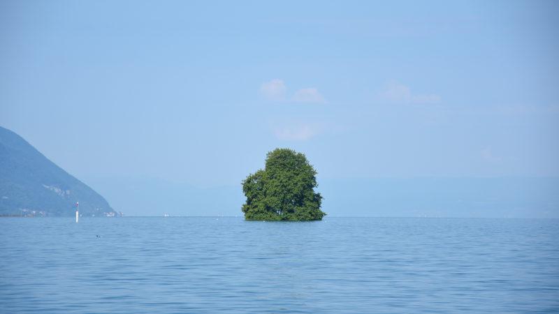 L'île de Peilz, au large de Villeneuve | © Grégory Roth