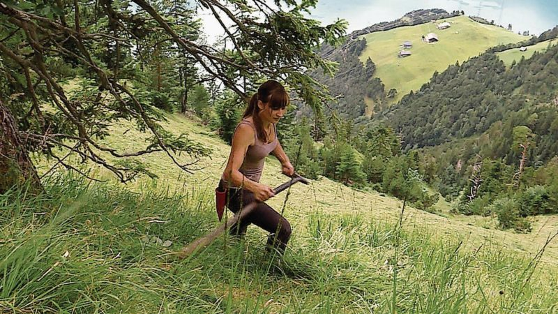 """Film documentaire """"Der Wildheuer – Senkrecht über dem Urnersee (faner à pic au-dessus du lac d'Uri)"""" du réalisateur lucernois Beat Bieri."""