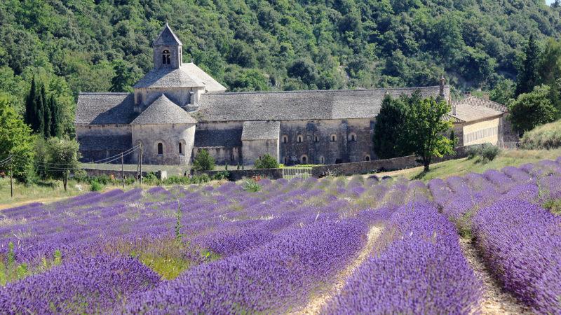 L'abbaye de Sénanque, en Provence, dans le sud de la France. | © Flickr/ Andrea Schaffer /CC BY 2.0