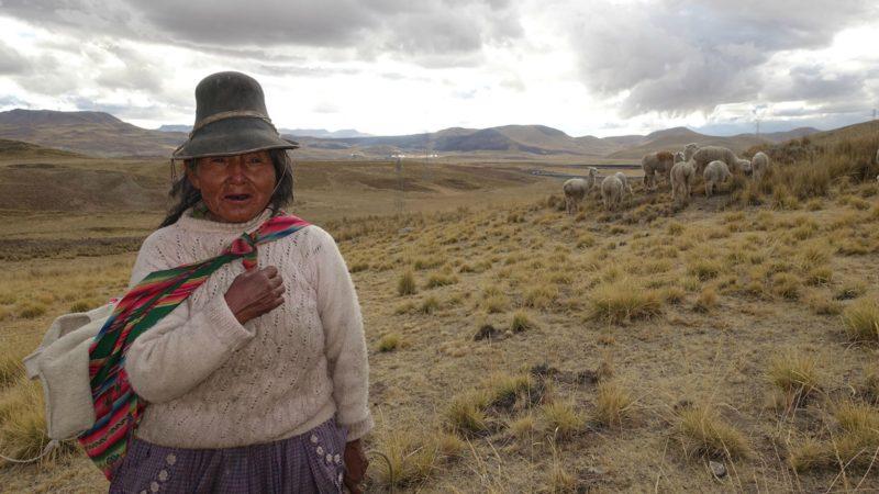 Pérou Bergère et son troupeau près de Las Bambas   ©  Jean-Claude Gerez