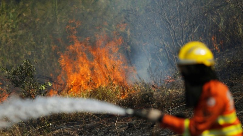 Amazonie-pompier