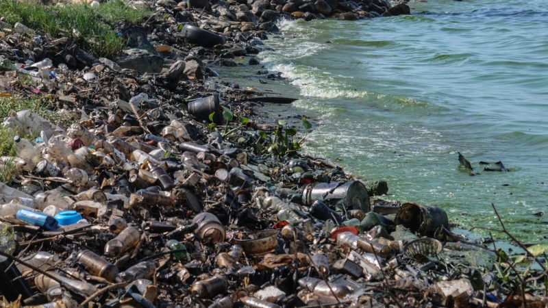 Des tonnes de déchets jonchent les eaux (photo Wikimeia commons The Photographer CC BY-SA 3.0)